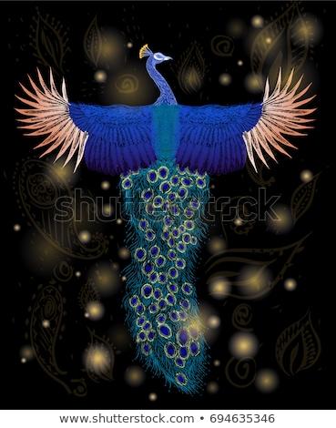 rosa · pássaro · paraíso · magia · cauda · belo - foto stock © bedlovskaya