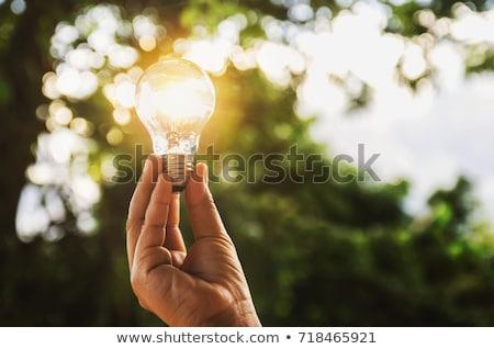 Hand gloeilamp technologie energie Stockfoto © CsDeli