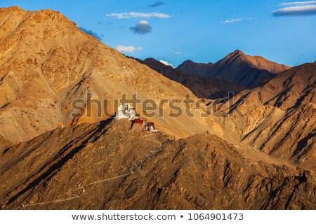Zafer kale ören uçurum tepe himalayalar Stok fotoğraf © dmitry_rukhlenko