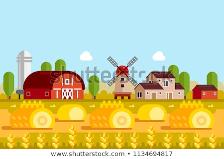 Rural Landscape with Granary Cartoon Vector Stock photo © robuart