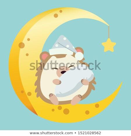 Alszik kicsi sündisznó rajz illusztráció boldog Stock fotó © cthoman