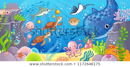 Mar vida animais desenho animado subaquático Foto stock © izakowski