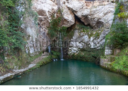 Covadonga Santa Cave a Catholic sanctuary Asturias Stock photo © lunamarina