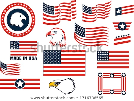 American Patriot Head USA Flag Mascot Stock photo © patrimonio