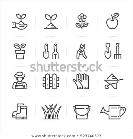 Boots Garden Planter Illustration Stock photo © lenm