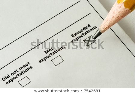 Survey With Exceeded Expectations Checked Stock photo © AndreyPopov