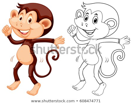 Stock fotó: Firkák · állat · majom · tánc · illusztráció · tánc