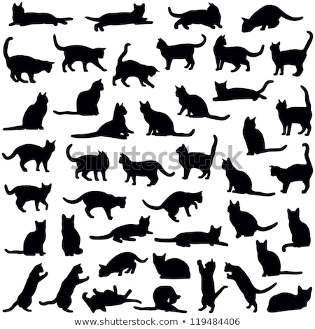 силуэта · белый · кошки · дизайна · искусства - Сток-фото © robuart