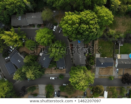 Oregon suburb  Stock photo © craig