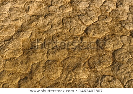 粘土 · パターン · 公園 · ナミビア · アップ - ストックフォト © emiddelkoop