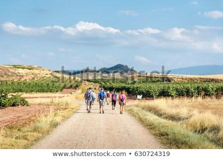 Zarándok sétál Santiago Spanyolország vidék egy személy Stock fotó © diego_cervo