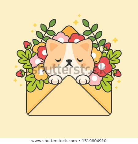 Cute cat in an envelope with flowers and leaves Stock photo © amaomam