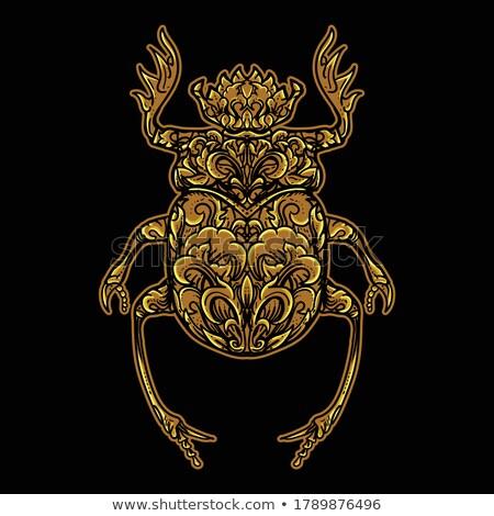 Bağbozumu toplama beyaz çizim örnek böcek Stok fotoğraf © patrimonio