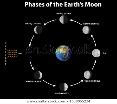 Diagram showing phases of the moon on earth Stock photo © bluering