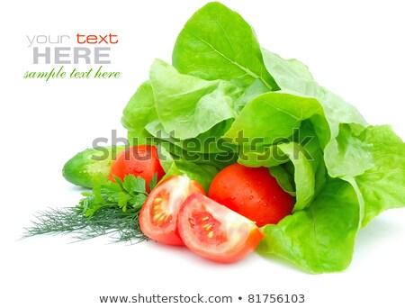 Vermelho tomates verde fresco salsa escuro Foto stock © vkstudio