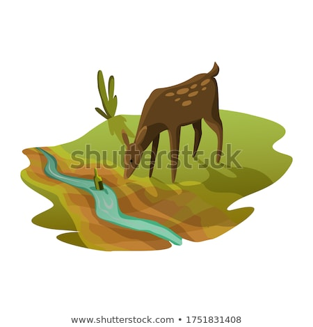 Earth global warming. The roe drinking water from the river is almost dry. Warning ecology poster. C Stock photo © designer_things