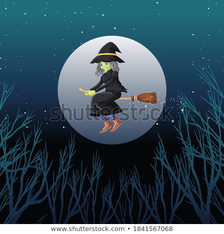 Witch or wizard riding broomstick on the sky isolated on sky bac Stock photo © bluering