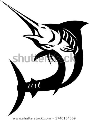 Blue Marlin Fish Jumping Up Black and White Retro Stock photo © patrimonio