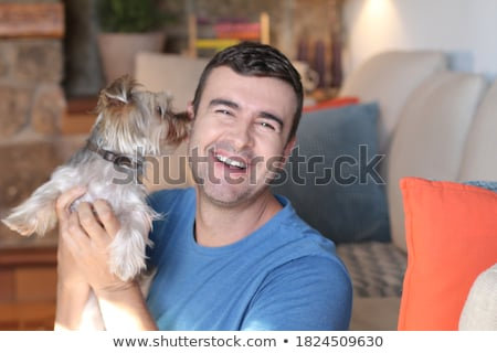 Adulte Homme yorkshire terrier studio portrait Photo stock © lithian