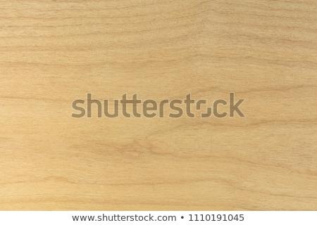 alder wood Stock photo © Paha_L