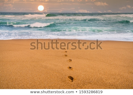 Footprints Going Out of Ocean Stock photo © ruigsantos