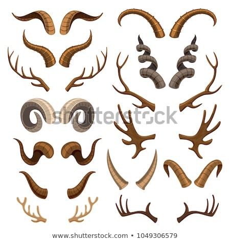 Collection of Ram Horns Vector Illustrations Stock photo © chromaco