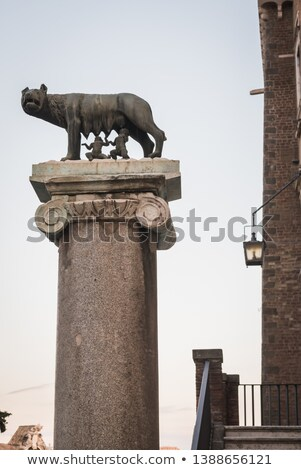 Famous statue of the she-wolf in Rome Stock photo © michey