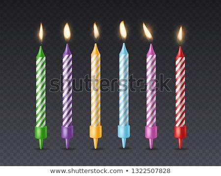рождения · празднования · свечей - Сток-фото © neirfy