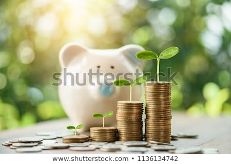 crecer · dinero · hombre · palabras · pizarra · luz - foto stock © Ansonstock