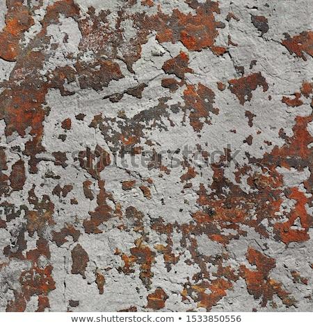 oude · gebarsten · verf · naadloos · textuur - stockfoto © leonardi