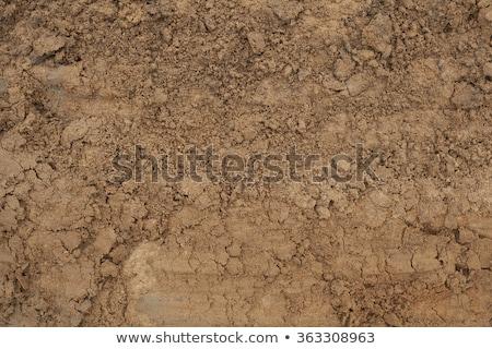 Błoto tekstury mokro brązowy gleby naturalnych Zdjęcia stock © Lightsource
