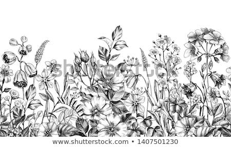 Monochroom rij 3d render afbeelding verf kleuren Stockfoto © ixstudio