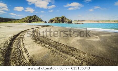 tracks on the beach Stock photo © hraska