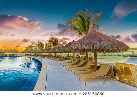 bridge and swimming pool at caribbean resort stock photo © kurhan