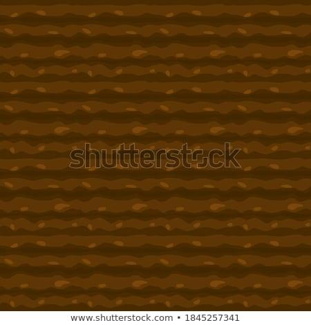 Seamless ground texture stock photo © theseamuss