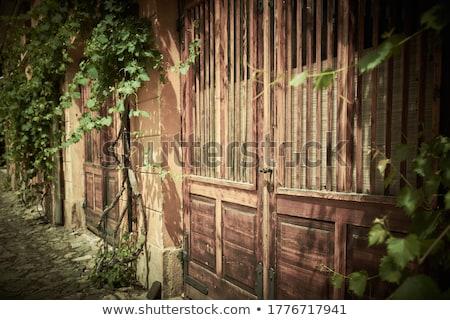 oude · binnenstad · groene · deur · houtstructuur · majorca - stockfoto © maxmitzu