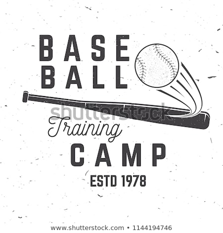 Baseball training camp emblem Stock photo © mikemcd