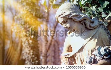 statue · femme · ange · zoom · flou · dame - photo stock © alphababy