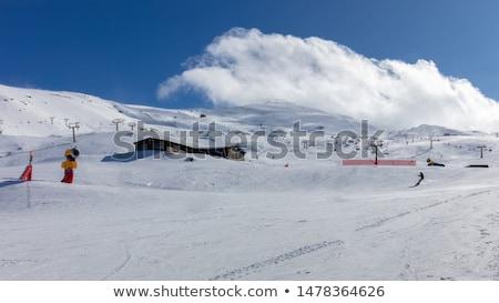 Nevada hegyek hó sí Spanyolország kert Stock fotó © billperry