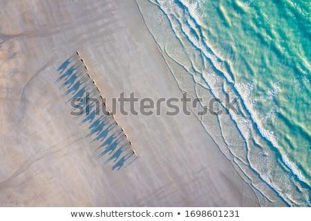 верблюда пляж небе глаза песок Африка Сток-фото © Kayco