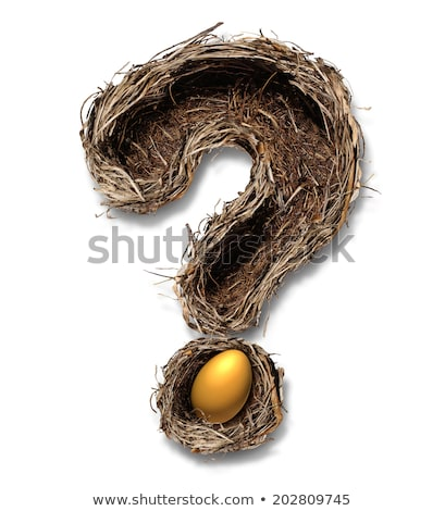 Retirement Nest Egg Questions Stock photo © Lightsource