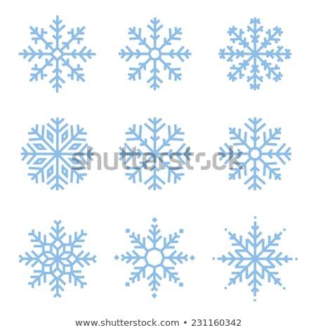 Set of decorative snowflakes  Stock photo © elenapro