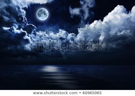 Full moon in night sky over moonlit water Stock photo © Zhukow