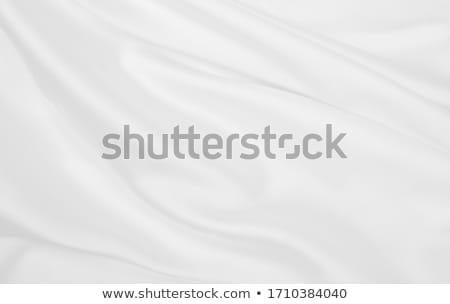 抽象的な · シルク · ファブリック · テクスチャ · 銀 · 布 - ストックフォト © yanukit