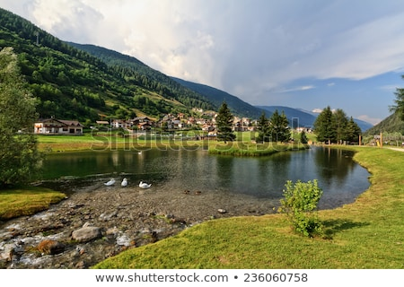 Stock photo: Trentino - Vermiglio in Val di Sole
