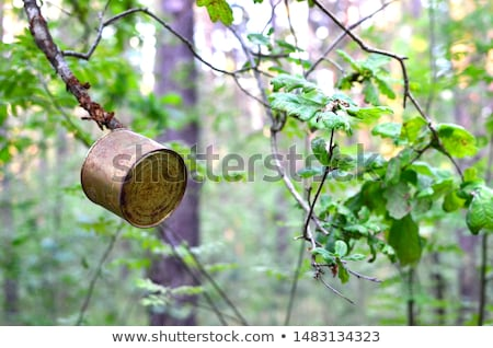 Old rusty crumbled tin can Stock photo © dezign56