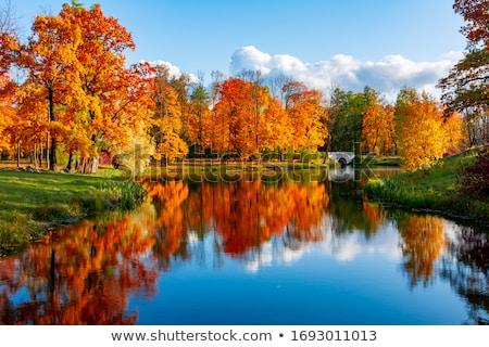 ősz tájkép tavacska kert égbolt víz Stock fotó © Pilgrimego