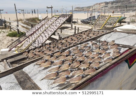 drying fish in nazare portugal stock photo © elxeneize