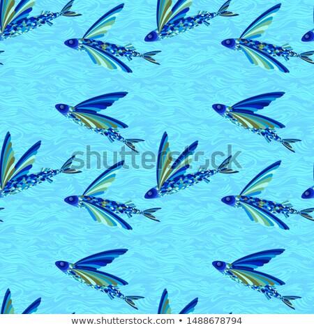 Flock of Flying Fish Stock photo © xochicalco