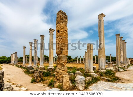 Colonnade at ancient Salamis ruins, Cyprus Stock photo © Kirill_M